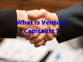 what-is-a-venture-capitalist