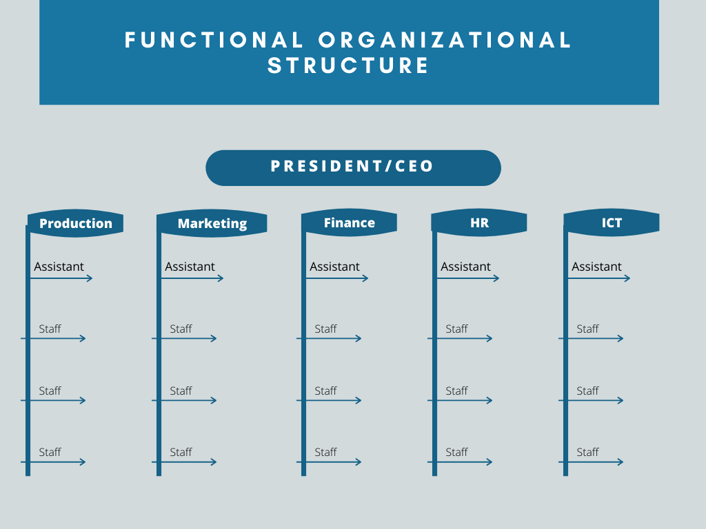 Functiona Organizational Structures