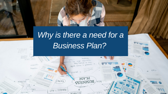 need of a startup business plan